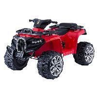 2019 New Tot Kids ATV Quad, Kids Racing Quad, Electric Quad for Kids (ST-M5258)